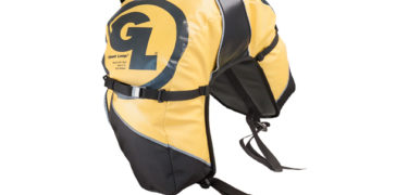 great-basin-saddlebag-yellow