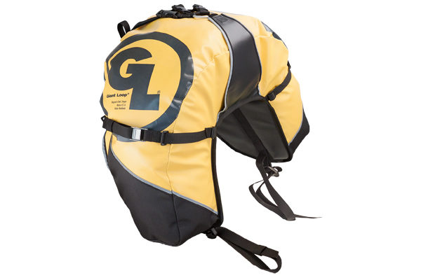 great-basin-saddlebag-yellow