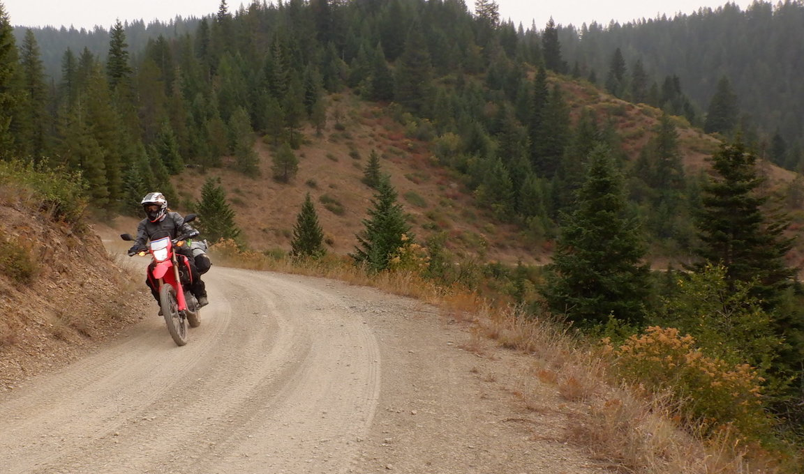 GL Rides the IDBDR on a Honda 300 Rally and a CRF300L